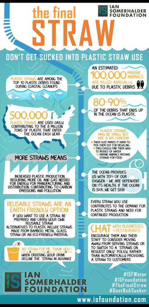 Infographic The Final Straw